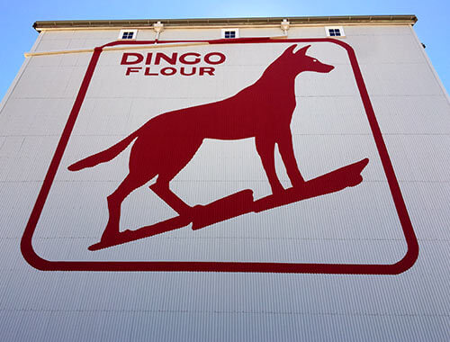 Dingo Flour Wall Replacement